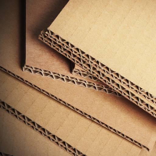 Image result for cardboard lepenka
